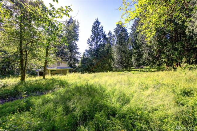 25600 SE Tiger Mountain Rd, Issaquah, WA 98027 (#1382060) :: Real Estate Solutions Group