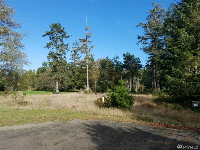 1507 314th Place, Ocean Park, WA 98640 (#1382525) :: Real Estate Solutions Group