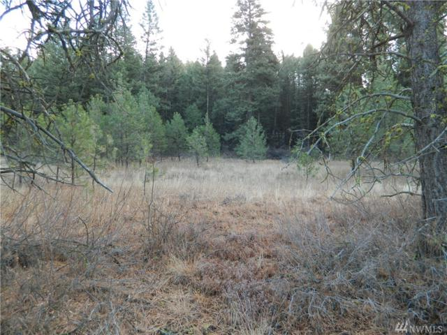 111 Tbd Vinatieri Rd, Oroville, WA 98844 (#1382554) :: NW Home Experts