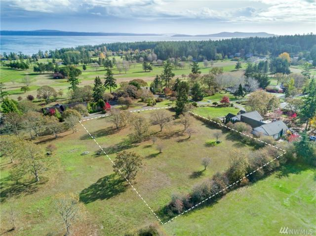 0-Lot 23 Garry Oak Lane, San Juan Island, WA 98250 (#1382606) :: Canterwood Real Estate Team