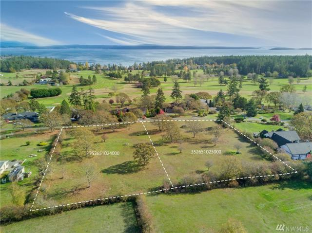 0-Lt 23/24 Garry Oak Lane, San Juan Island, WA 98250 (#1382611) :: Ben Kinney Real Estate Team