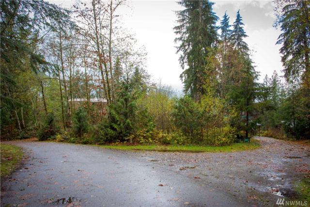 11074 Alpine Rd, Deming, WA 98244 (#1382942) :: McAuley Real Estate