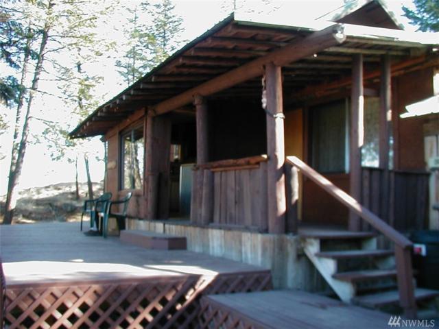 175 Peony Creek Rd, Tonasket, WA 98855 (#1382963) :: Homes on the Sound