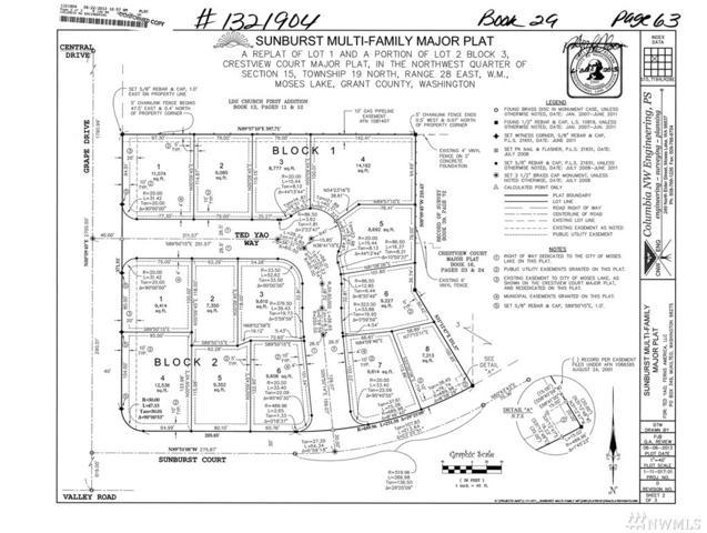 930 Ted Yao Way, Moses Lake, WA 98837 (#1383341) :: Kimberly Gartland Group