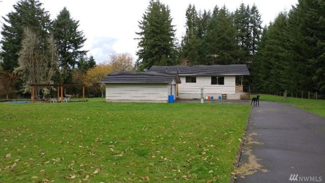 770 Carnine Rd, Castle Rock, WA 98611 (#1383377) :: Ben Kinney Real Estate Team