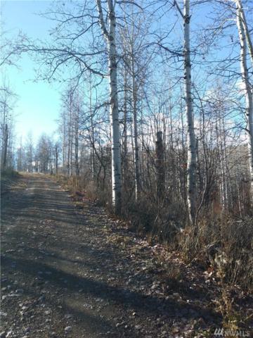 0-S1/2 NE Ellemeham  Mt Road, Oroville, WA 98844 (#1383416) :: Keller Williams Realty Greater Seattle