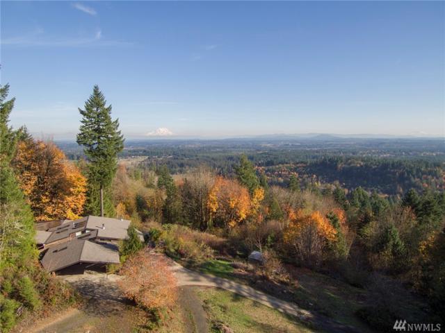 9025 Waddell Creek Rd, Olympia, WA 98512 (#1383417) :: Northwest Home Team Realty, LLC