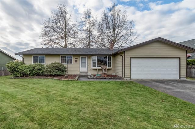 206 Blair Dr, Everson, WA 98247 (#1384124) :: Real Estate Solutions Group