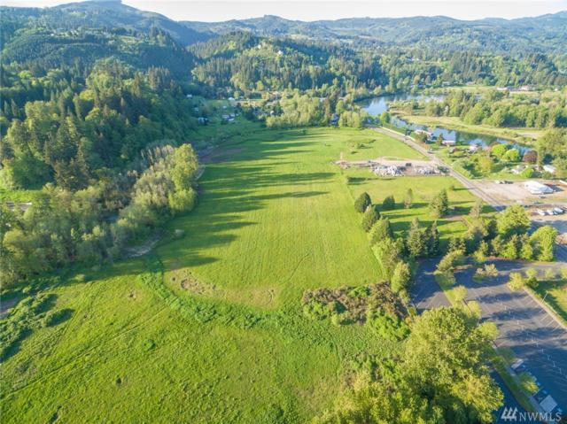2334 Lewis River Rd, Woodland, WA 98674 (#1384606) :: NW Home Experts