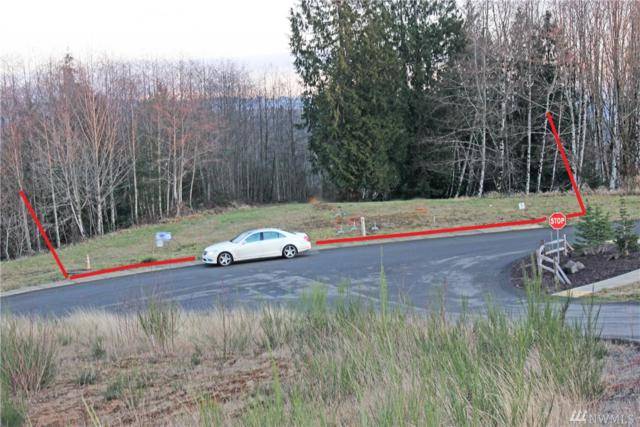 21 Mcdonald Creek Lane, Elma, WA 98541 (#1384792) :: Ben Kinney Real Estate Team
