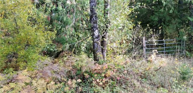 197 S Hawkins Rd, Winlock, WA 98596 (#1384838) :: Keller Williams Realty Greater Seattle