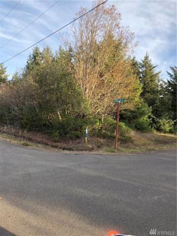 131 Cloquallum St SE, Ocean Shores, WA 98569 (#1384907) :: Keller Williams Realty Greater Seattle