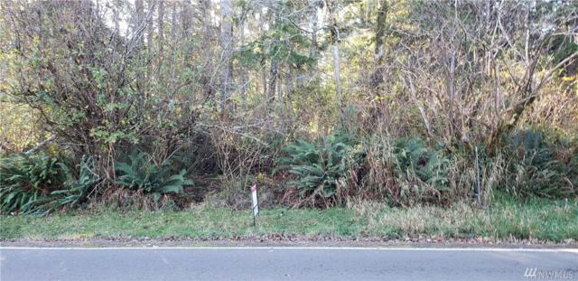 711 NE Duck Lake Drive NE, Ocean Shores, WA 98569 (#1385003) :: NW Home Experts