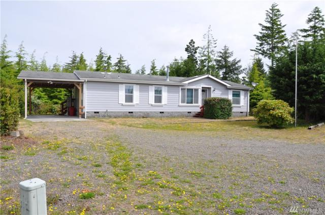 20717 Crane Place, Ocean Park, WA 98640 (#1385034) :: NW Home Experts