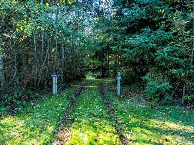 28811 State Route 525, Coupeville, WA 98239 (#1385140) :: Ben Kinney Real Estate Team
