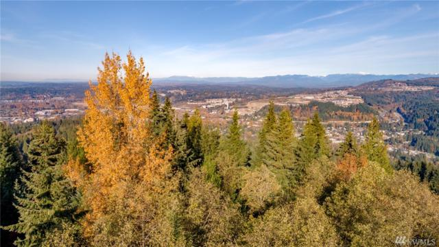 2400 Squak Mountain Lp SW, Issaquah, WA 98027 (#1385347) :: Beach & Blvd Real Estate Group
