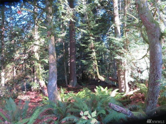 0-Lot A SE Yeshua Lane, Port Orchard, WA 98366 (#1385742) :: Costello Team