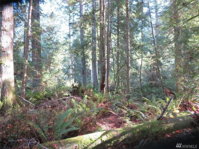 0-Lot B SE Yeshua Lane, Port Orchard, WA 98366 (#1385749) :: Keller Williams Everett