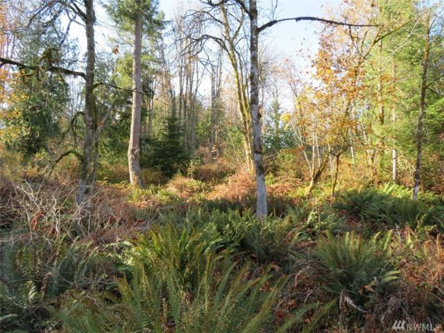 0-Lot 2 SE Yeshua Lane, Port Orchard, WA 98366 (#1385761) :: Costello Team