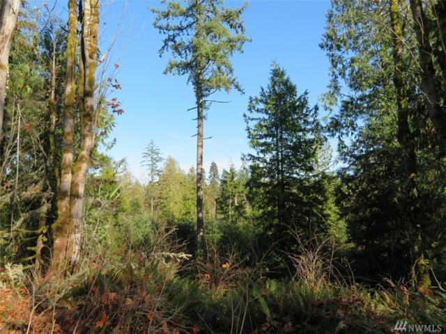 0-Lot 5 SE Yeshua Lane, Port Orchard, WA 98366 (#1385771) :: Keller Williams Everett