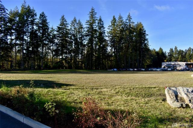 1329 Wintergreen Lane NE, Bainbridge Island, WA 98110 (#1386693) :: Costello Team