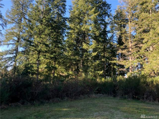 99999 Mcmillan Rd, Chimacum, WA 98325 (#1387147) :: Homes on the Sound