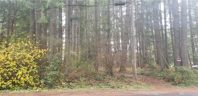14328 97th Ave NW, Gig Harbor, WA 98329 (#1387474) :: Real Estate Solutions Group