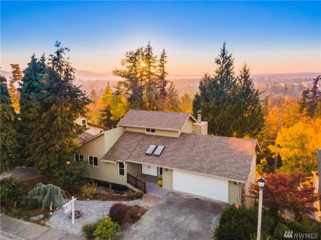3033 W Alpine Dr, Bellingham, WA 98226 (#1387510) :: Pickett Street Properties