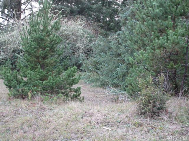 757 Point Brown Ave SW, Ocean Shores, WA 98569 (#1387541) :: Keller Williams Realty