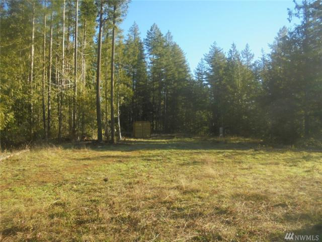 295961 State Route 101 Hwy, Quilcene, WA 98376 (#1387730) :: Kimberly Gartland Group