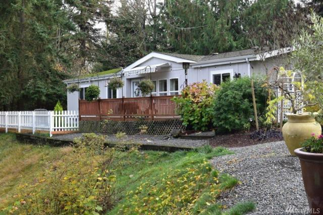 141 Lavender Ridge Lane, Sequim, WA 98382 (#1387743) :: The DiBello Real Estate Group
