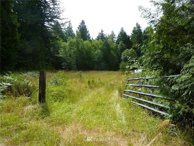 132 Go-Onna Drive, Quilcene, WA 98376 (#1387844) :: The Original Penny Team