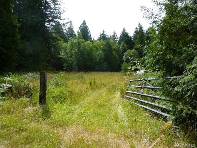 132 Go-Onna Drive, Quilcene, WA 98376 (#1387844) :: Lucas Pinto Real Estate Group