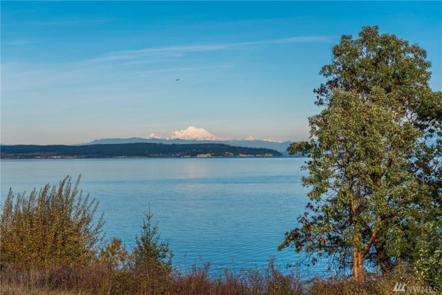 288 Kineth Point Place, Coupeville, WA 98239 (#1388727) :: The Craig McKenzie Team