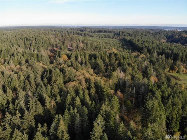 10313 Wright Bliss Rd KP, Gig Harbor, WA 98329 (#1389118) :: Canterwood Real Estate Team
