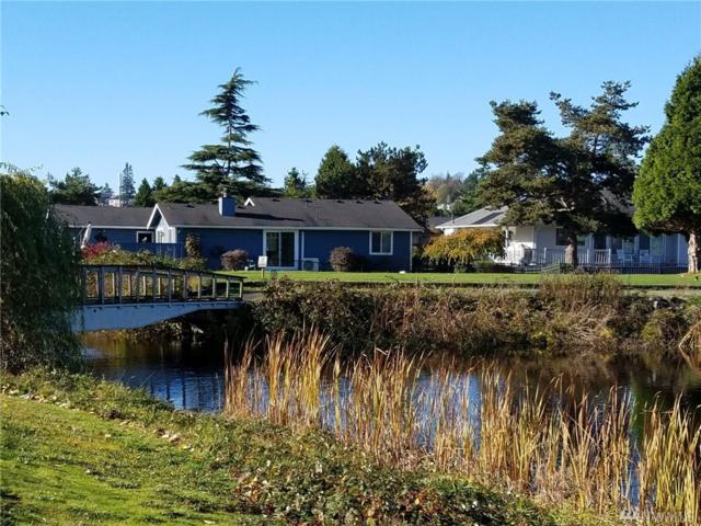 8114 Sehome Rd, Blaine, WA 98230 (#1389220) :: Homes on the Sound