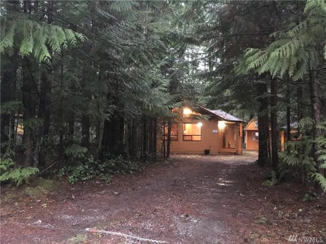 1321 King Valley Dr, Maple Falls, WA 98266 (#1389323) :: Ben Kinney Real Estate Team