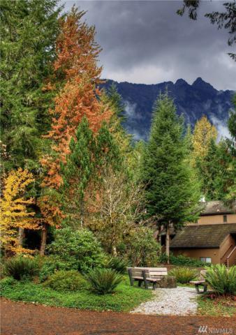 10500 Mt Baker Hwy #601, Glacier, WA 98244 (#1389565) :: Pickett Street Properties