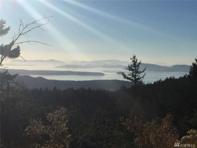3140 Buck Mountain-Lot 96, Orcas Island, WA 98245 (#1389825) :: Homes on the Sound