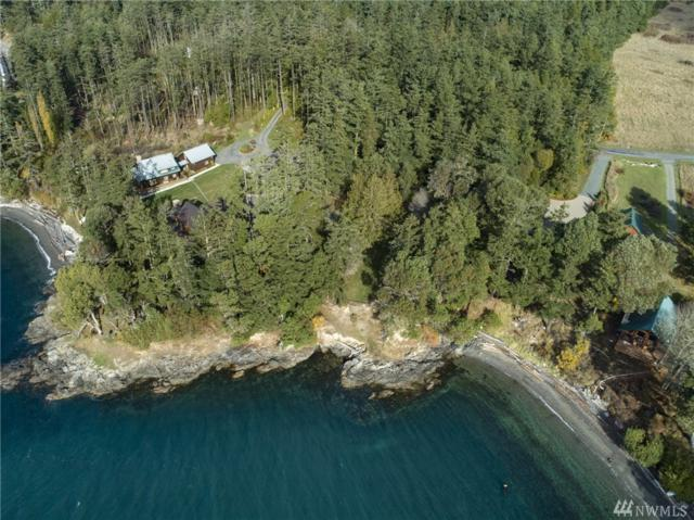 1299 Yacht Haven Rd, San Juan Island, WA 98250 (#1390001) :: Homes on the Sound