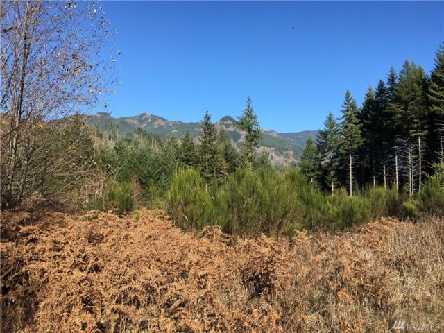 0-xxx Cropsey Dr, Randle, WA 98377 (#1390006) :: Mike & Sandi Nelson Real Estate