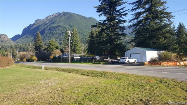 13224 436th Ave SE, North Bend, WA 98045 (#1390008) :: Costello Team