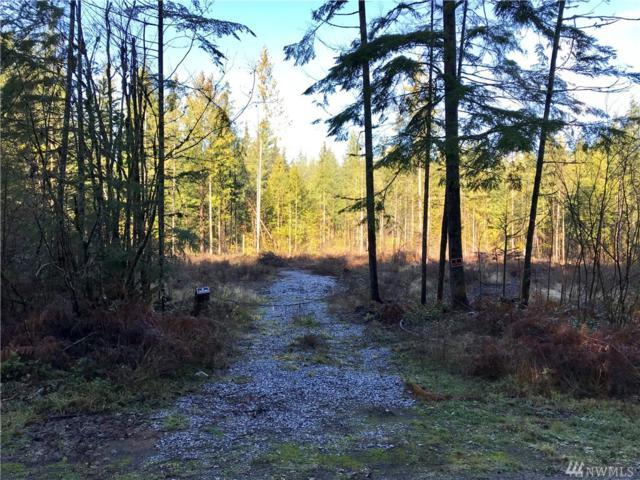 9130 Lacie Lane, Maple Falls, WA 98266 (#1390044) :: Kimberly Gartland Group