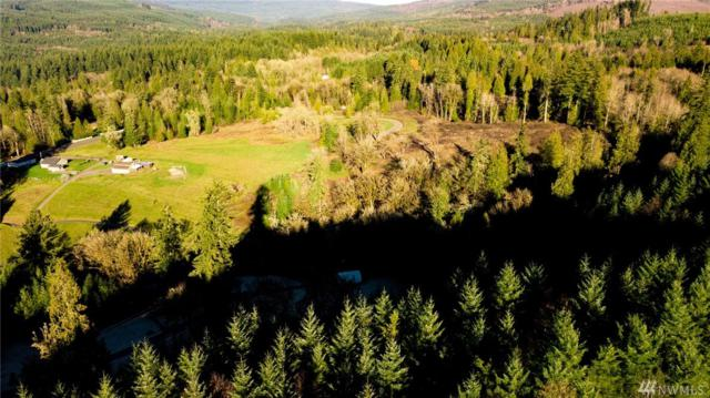0 Young Rd, Kelso, WA 98626 (#1390059) :: Homes on the Sound