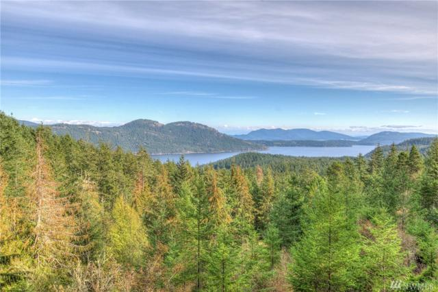 811 Spring Hill Rd, Orcas Island, WA 98245 (#1390659) :: Homes on the Sound