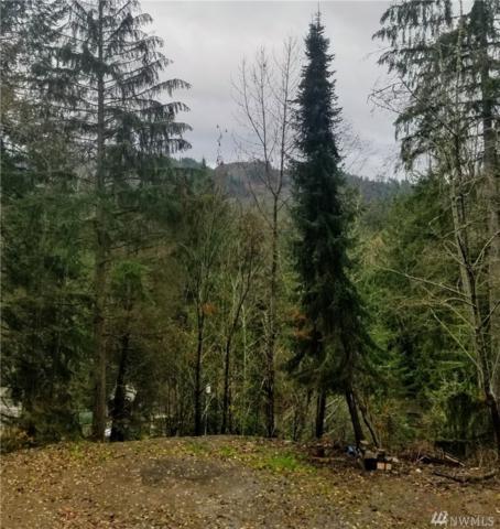 21401 119th Place NE, Granite Falls, WA 98252 (#1390717) :: Ben Kinney Real Estate Team