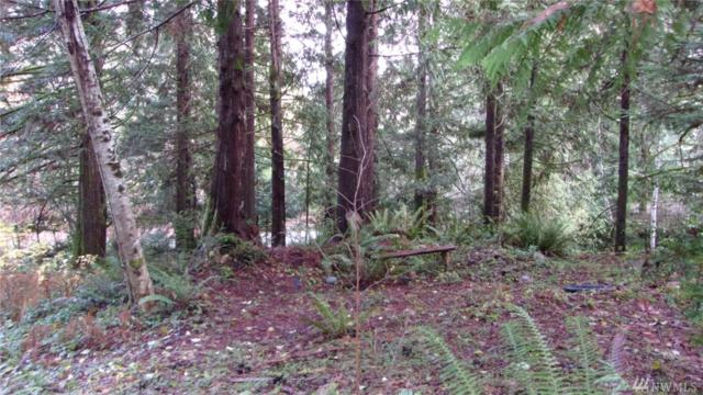 0 Olympic Trails Dr, Lilliwaup, WA 98555 (#1390806) :: Pickett Street Properties