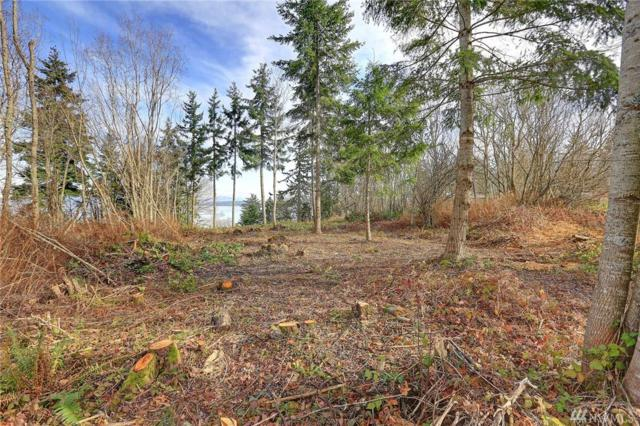 0 Cascade View Dr, Camano Island, WA 98282 (#1390845) :: Canterwood Real Estate Team
