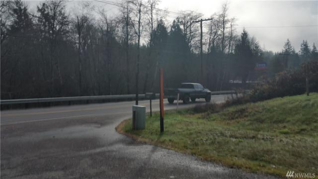 0 SE Highway 3, Shelton, WA 98584 (#1390903) :: HergGroup Seattle