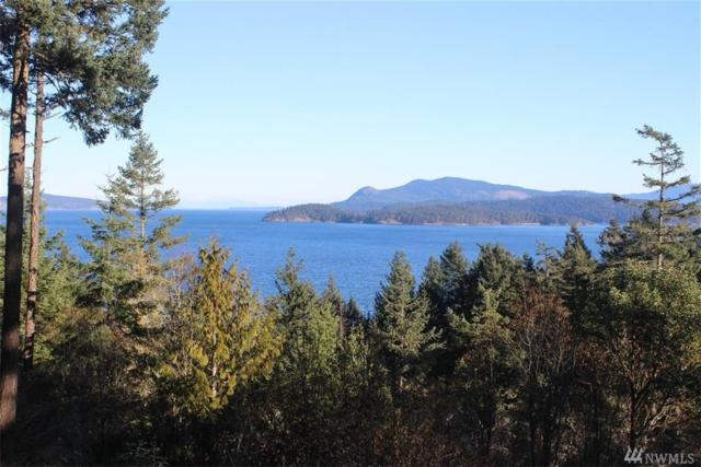 329 Upper Dr, San Juan Island, WA 98250 (#1391264) :: Homes on the Sound